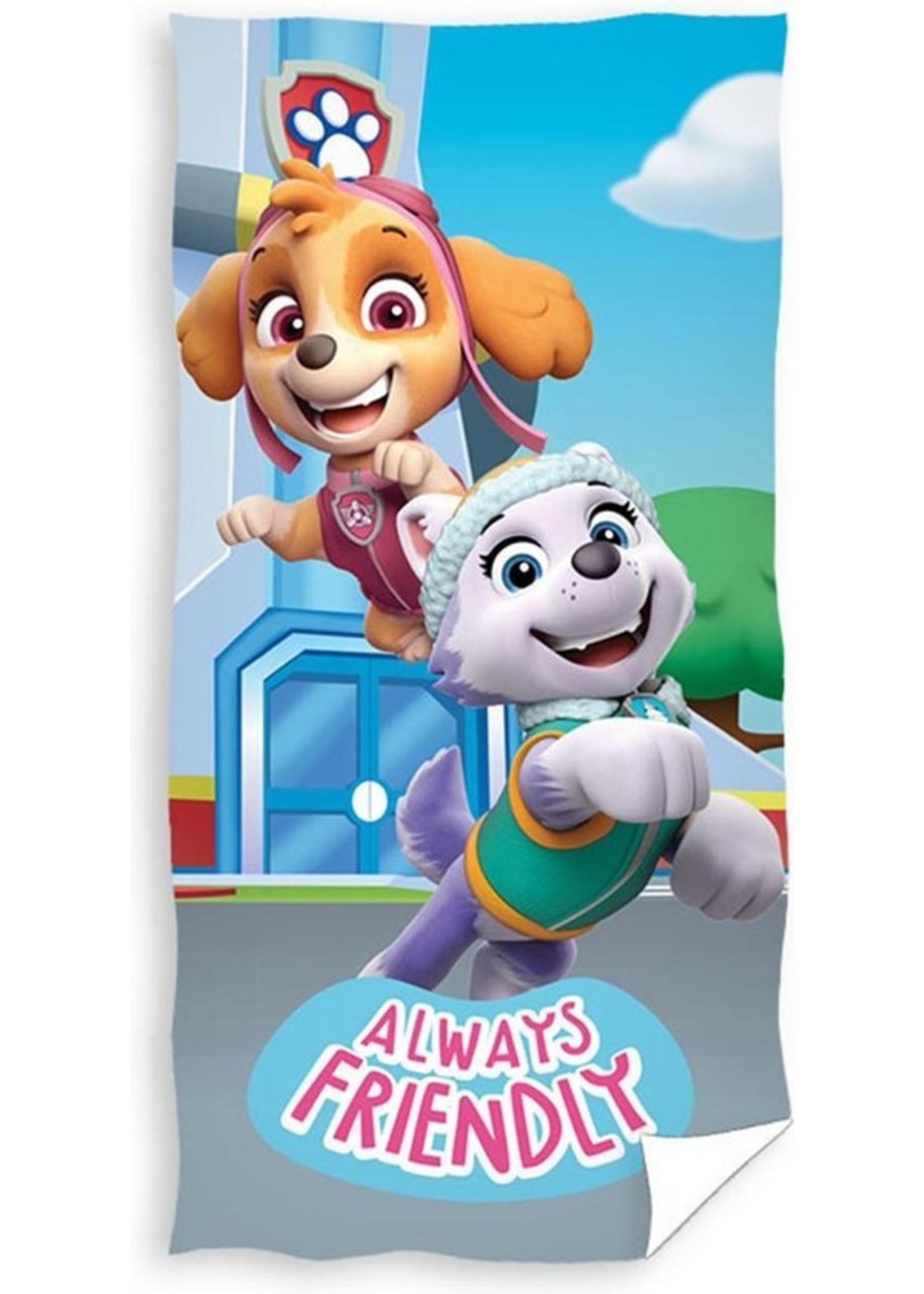 Nickelodeon Paw Patrol  Paw Patrol  Handdoek Team