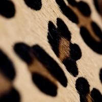 Carelli Italia Hippe Clutch Sassari Panterprint Small