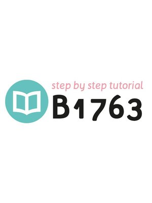 Tutorial B1763