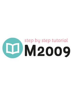Tutoriel M2009