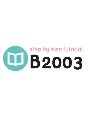 Tutorial B2003