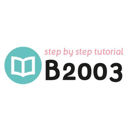 Tutoriel B2003