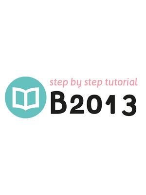 Tutoriel B2013
