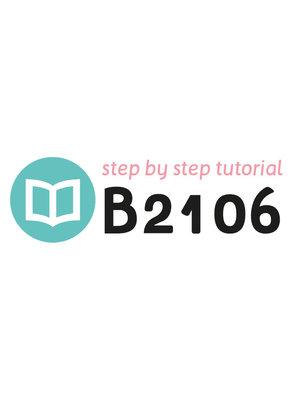 Tutorial B2106