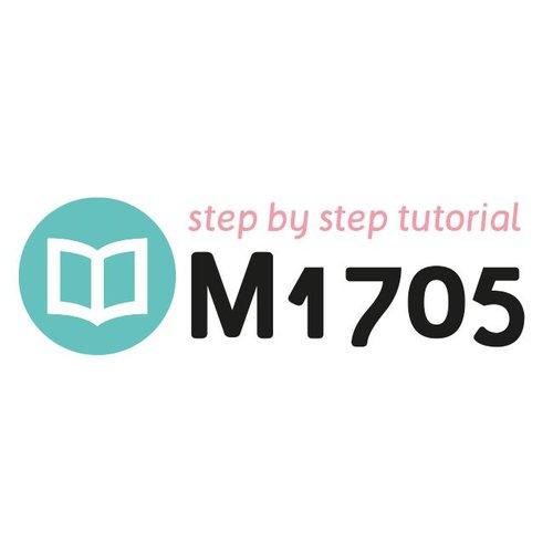 Tutorial M1705