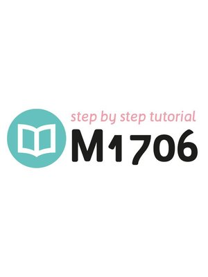 Tutorial M1706