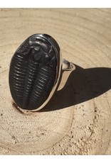 trilobiet fossiel zilver ring