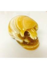 calciet geel schedel