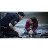 Lumière Crime Series MIDNIGHT SUN - (Blu Ray)