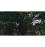Lumière Classics THE PIANO (Digitally Remastered) | BLU-RAY