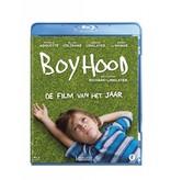 Lumière BOYHOOD (Blu-ray)