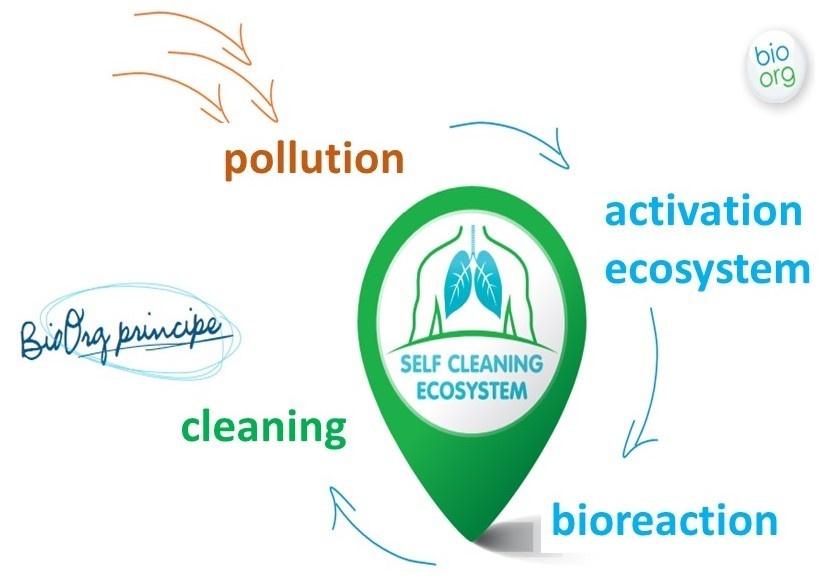 Ecosystem EN