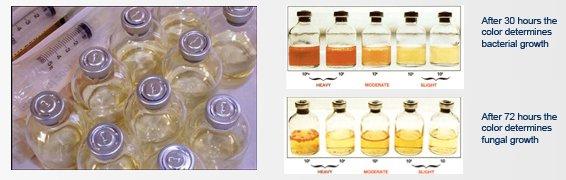 MCE Chemicals Liqui-Cult Fuel Test Kit