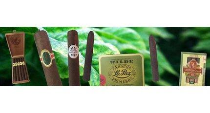 Braziliaanse gerelateerde sigaren