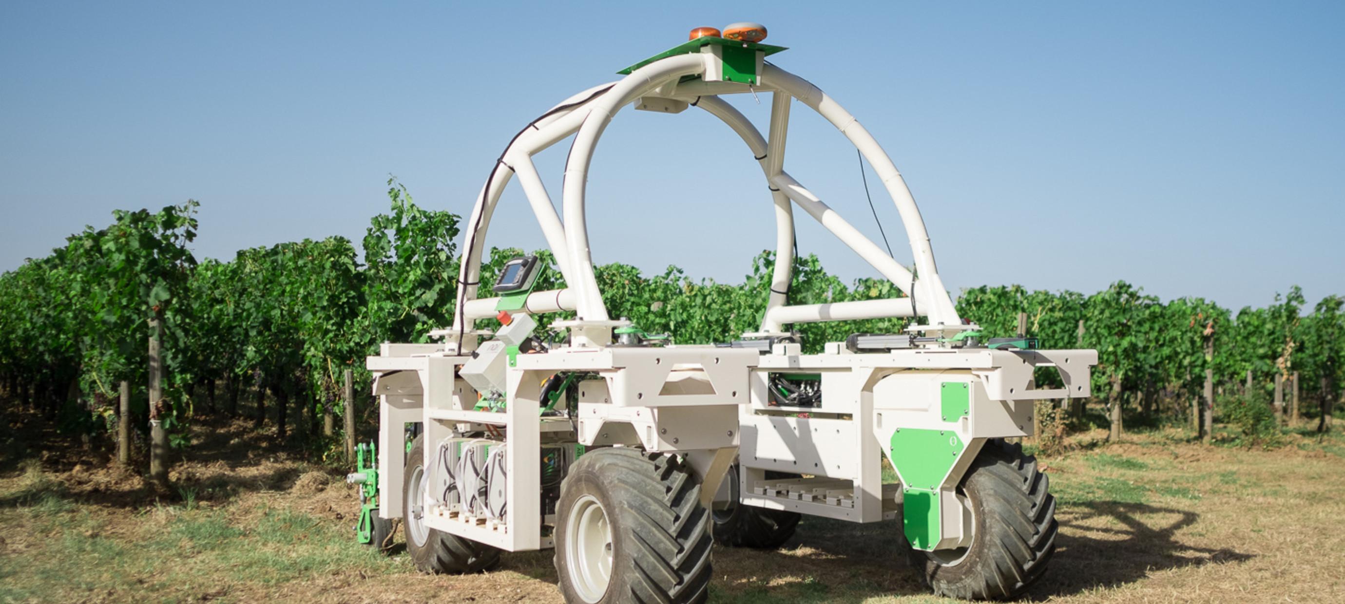 Robots in de wijngaard