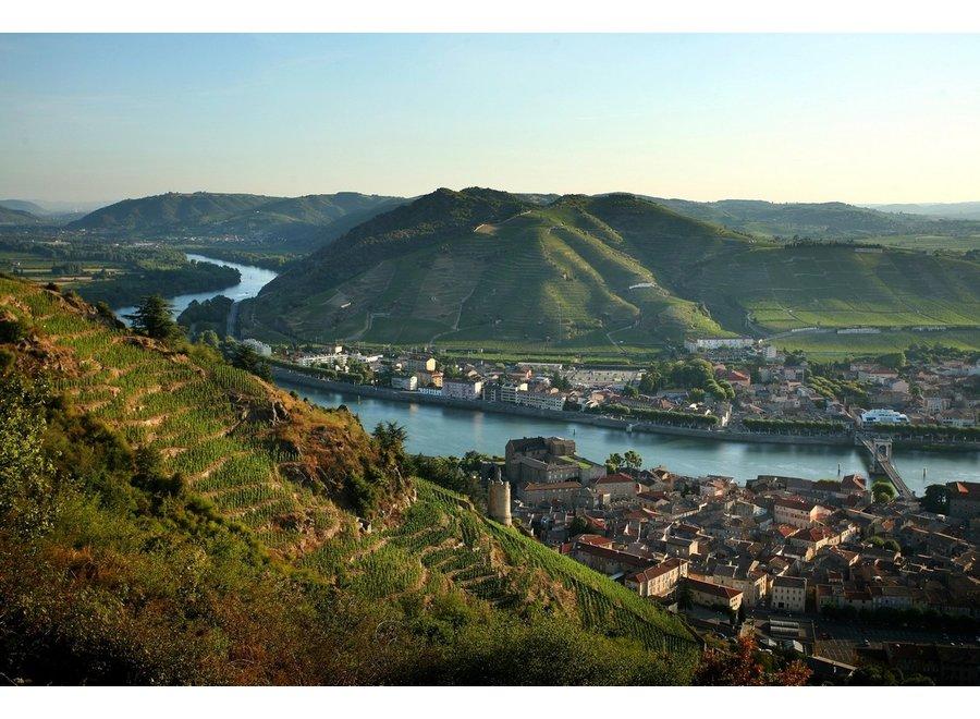 Online Masterclass 'Zuidelijke Côtes du Rhône'  (Proefset voor 1 Persoon)