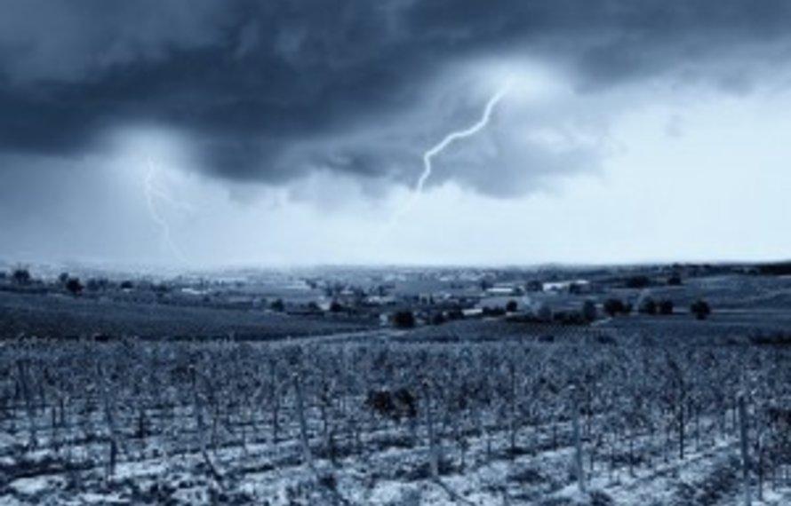 Franse wijnen: Rampjaar 2016