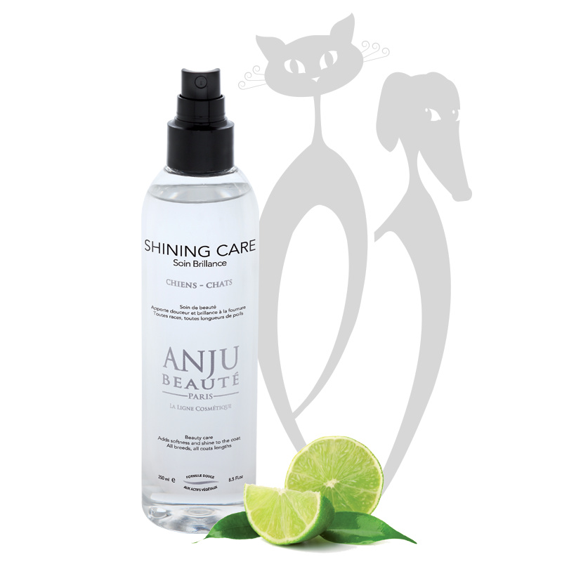 Anju Beauté Shining Care Spray