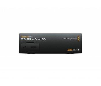 Blackmagic Design Mini Converter Teranex Mini - 12G-SDI to Quad SDI