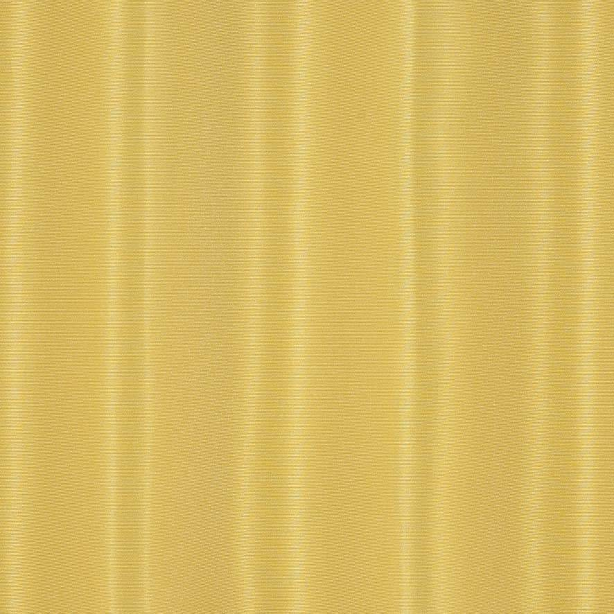 Taft 300 - Daffodil
