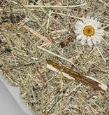 Organoid® Wildspitze Margeritta