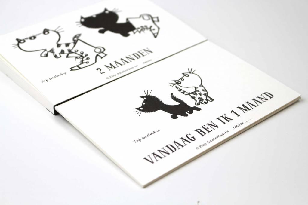 BBNC Pim & Pom fotokaarten / milestone cards