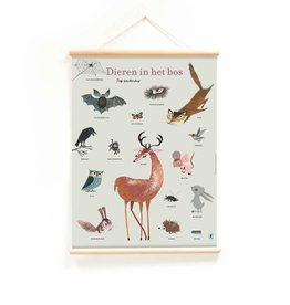 Little & Pure Educational Poster 'Forest Animals'