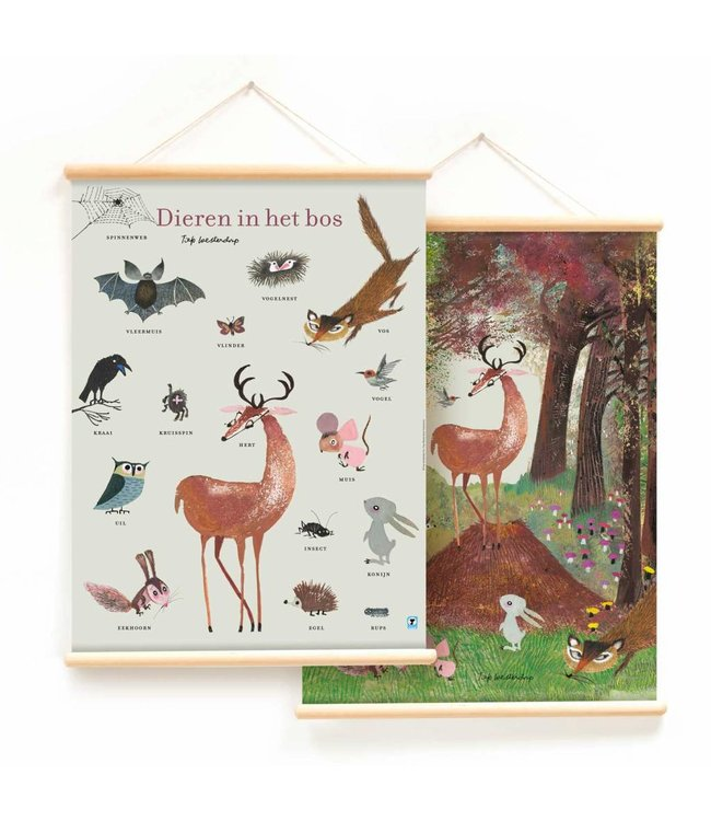 Educational Poster 'Forest Animals' - Fiep Westendorp
