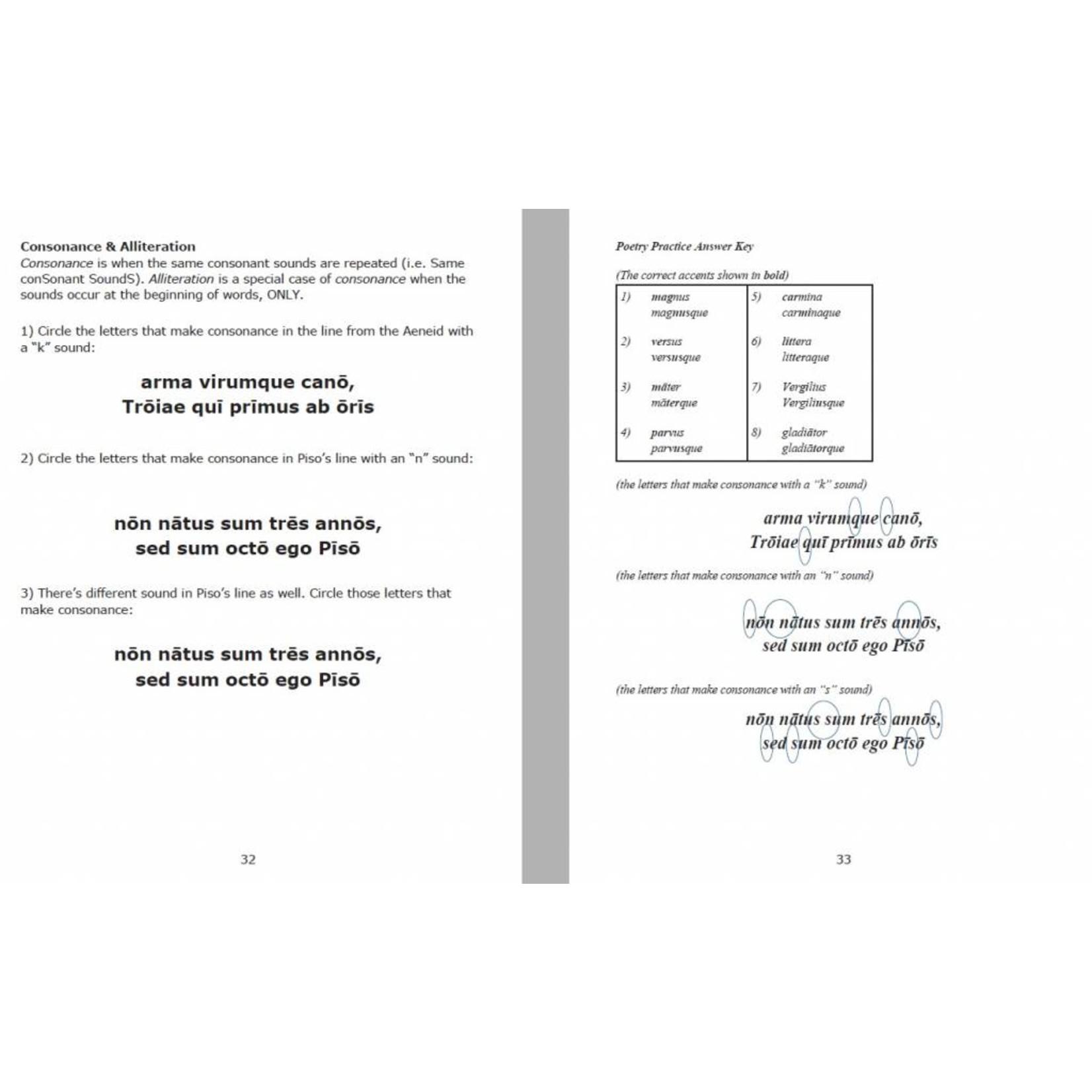 Magister P Pīsō Ille Poētulus - Docentenhandleiding
