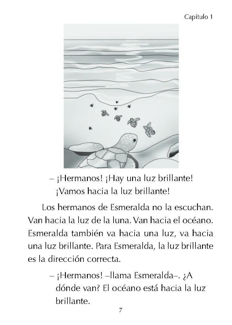 Esmeralda, la tortuiguita marina