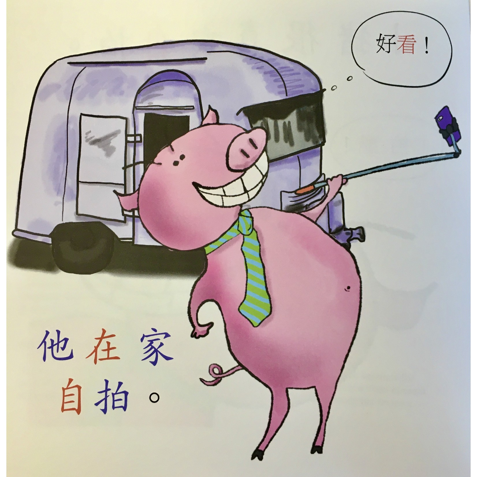 Squid for brains Pig takes selfies (Chinese - in simplified characters)