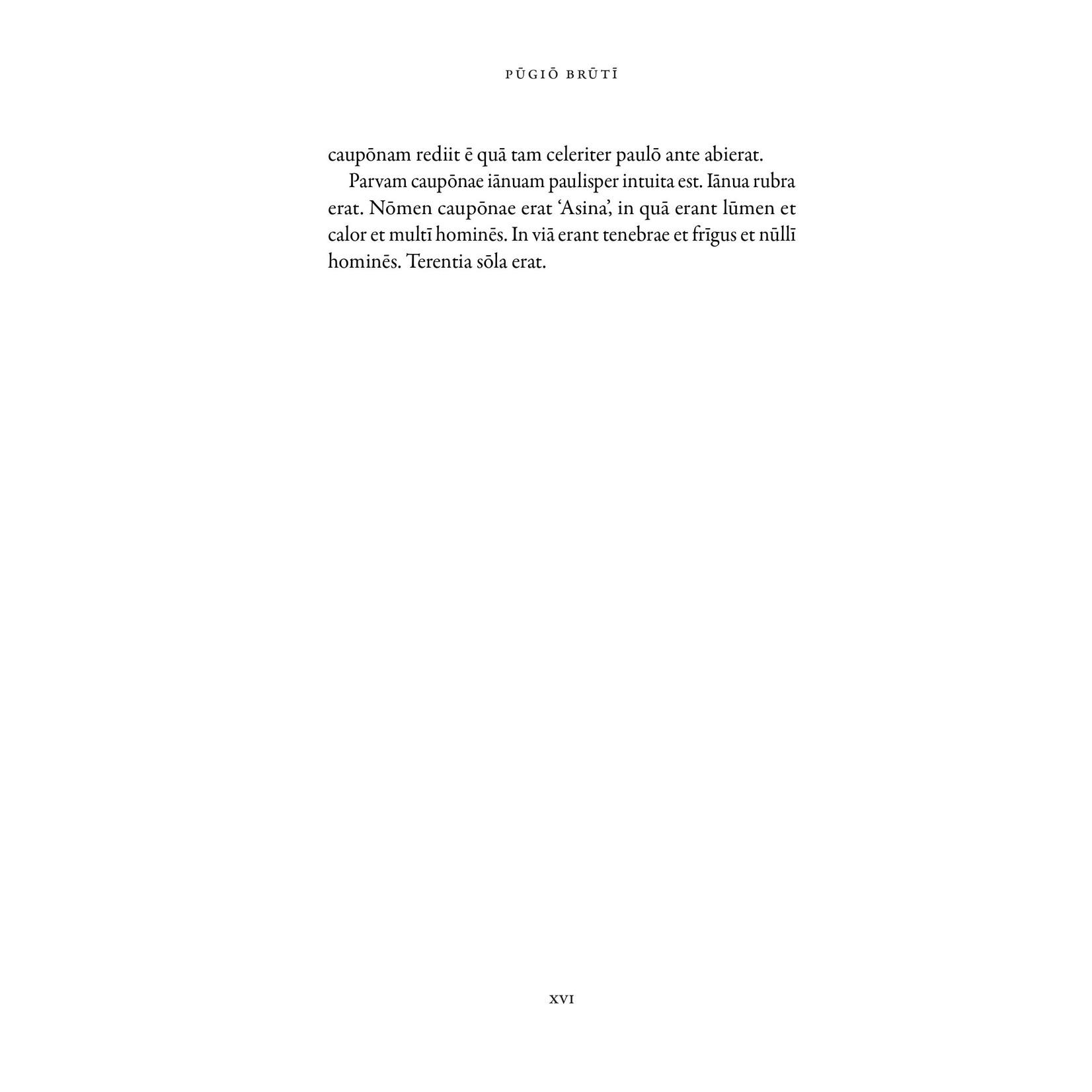 Latinitium Pugio Bruti - A crime story in easy Latin