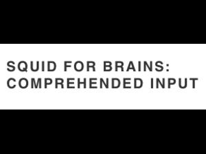 Squid for brains