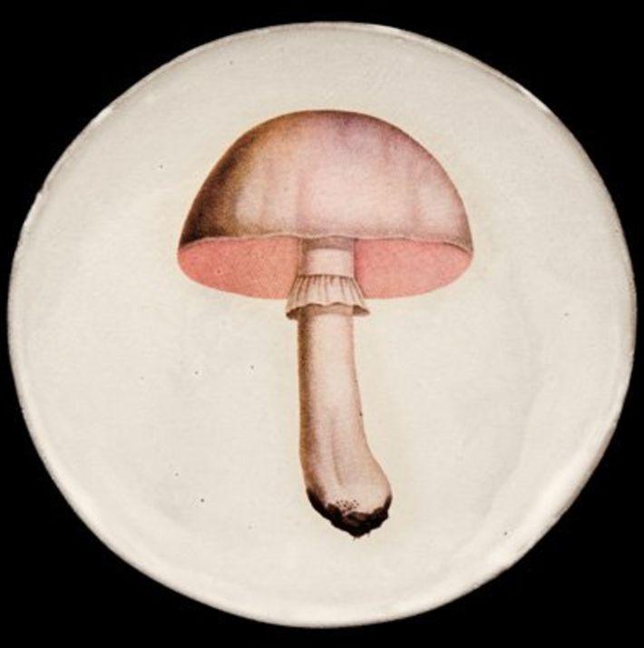 Astier de Villatte John Derian Plate - White Champignon
