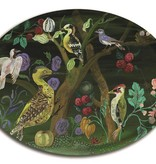 Avenida Home Tray Oval - Who's nest is this?