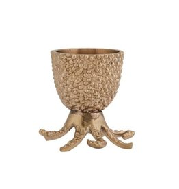 Doing Goods Egg Cup - Octopus