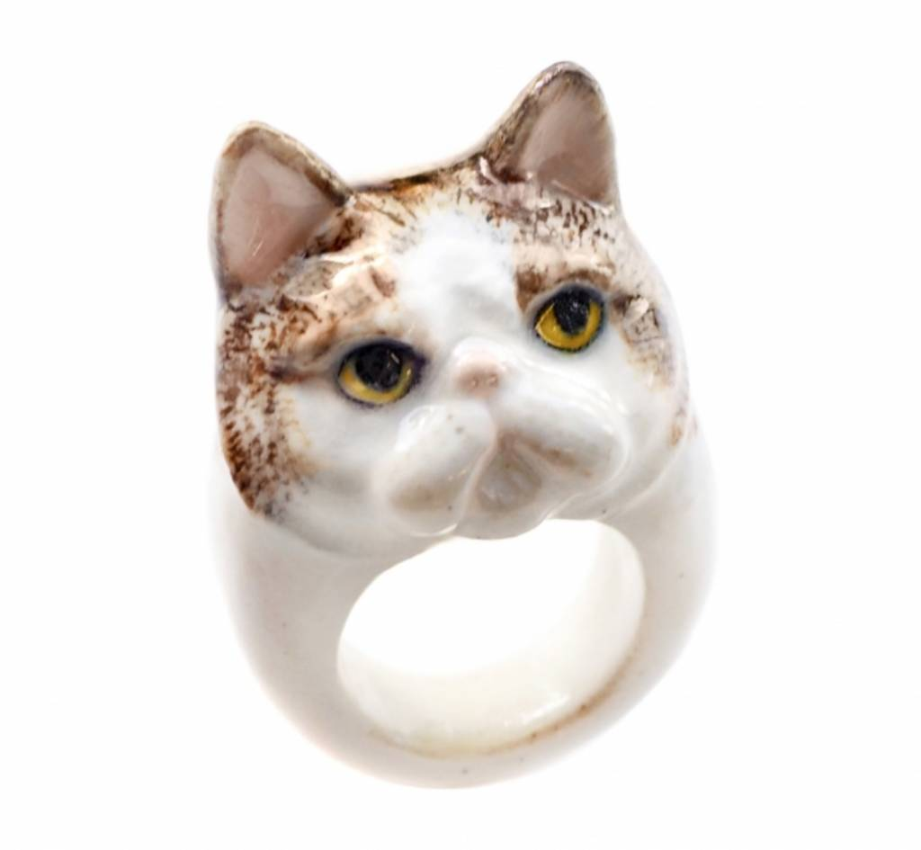 Image of: Movie Nach Ring Grumpy Cat Daily Express Ring Grumpy Cat Maisonnl Concept Store