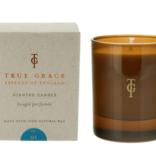 True Grace  Burlington Candle - Fig