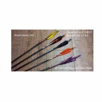 SkyArt Archery. Sprint 300