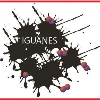 Pfeil Spitzen Iguanes