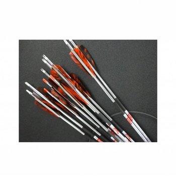 SkyArt Archery. SkyArt Sprint X-20