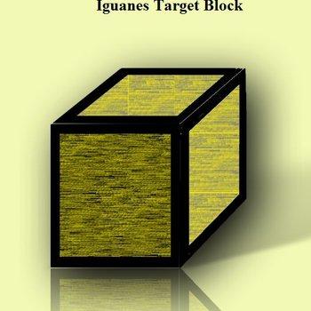 Iguanes.  Nano-Fuse SB Block 60 x 60 x 60