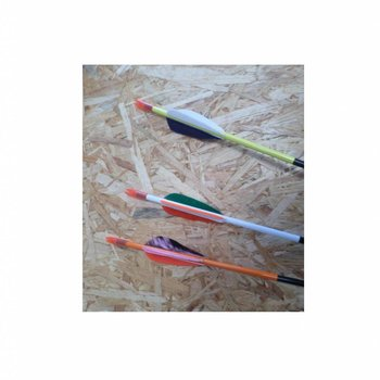 SkyArt Archery. Event Pfeil Neptune