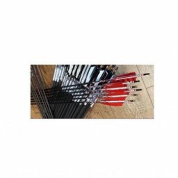 SkyArt Archery. Komplett Pfeil SkyArt Carbon 3-D