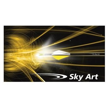 SkyArt Carbonschäfte