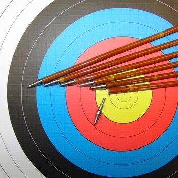 SkyArt Archery. Bamboo Imitate. Schaft ohne Zubehör