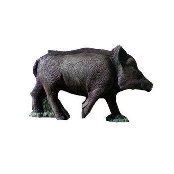 Imago3D Young boar