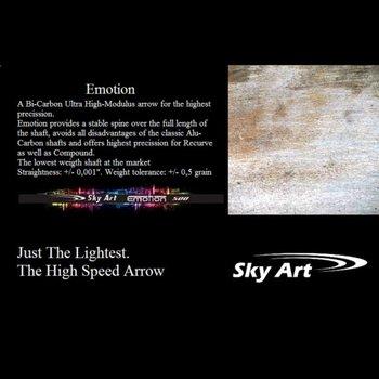 SkyArt Emotion Bi-Carbon Pfeil