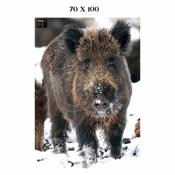 Maximal BIG GAME 70X100 WILD BOAR IN THE SNOW