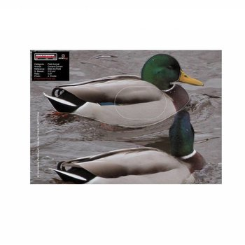Maximal SMALL ANIMALS 25X35 MALLARD DUCK